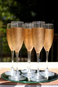 Glittery Champagne Glass