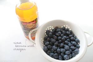 blueberries + vinegar